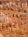 Hoodoos in bryce canyon national park utah Stock Photos