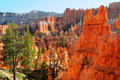 Hoodoos de gorge de bryce de l'Arizona Photographie stock