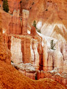 Hoodoos Rocks Closeup Sunrise Bryce Canyon Royalty Free Stock Photo