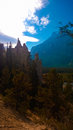 Hoodoos tree forest banff valley photoshop color filter Stock Image