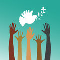 Hope for peace multicultural hands reaching dove of Royalty Free Stock Photography