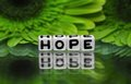 Hope text with green flowers in the background Royalty Free Stock Photos