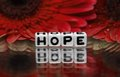 Hope text with red flowers in the background Royalty Free Stock Photo
