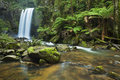 Hopetoun Falls in Great Otway NP, Australia Royalty Free Stock Photo