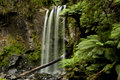 Hopetoun Falls Royalty Free Stock Photo
