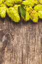 The hops heap with green leaf on a wooden background with copy space Royalty Free Stock Photos