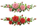 Horisontal border with roses branches. Royalty Free Stock Photo