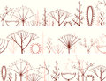 Horizontal banner of different types of inflorescence vector scientific scheme flower on stalk botany Royalty Free Stock Image
