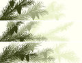 Horizontal banner of spruce branch set vector with cones in green tone Royalty Free Stock Image