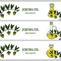 3 horizontal banners, jojoba oil in color