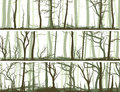 Horizontal banners with many tree trunks set vector coniferous deadwood and deciduous forest Stock Photos
