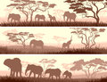 Horizontal banners of wild animals in african savanna abstract elephants with trees Stock Images