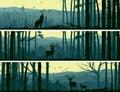 Horizontálne z divoký zvieratá v kopca drevo