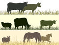 Horizontal illustration of farm pets vector banner silhouettes grazing animals cow horse sheep Stock Photos
