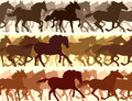 Horizontal illustration herd of horses. Stock Photos