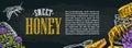 Horizontal poster with honey, honeycomb, jar, spoon, bee. Royalty Free Stock Photo
