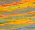 Horizontal rainbow eucalyptus tree bark Royalty Free Stock Photo