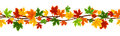 Horizontal seamless background with autumn maple leaves colorful on a white Stock Photography