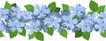 Horizontal seamless background with blue flowers illustration of plumbago and green leaves on white Stock Photo
