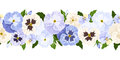 Horizontal seamless background with blue and white pansy flowers vector illustration purple green leaves Stock Images