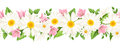 Horizontal seamless background with daisies and harebell flowers. Vector illustration. Royalty Free Stock Photo