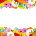 Horizontal seamless background with gerbera flower Royalty Free Stock Photo
