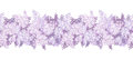 Horizontal seamless background with lilac flowers vector Stock Photography