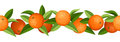 Horizontal seamless background with oranges illustration of and leaves on white Stock Images