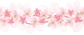 Horizontal seamless background with pink flowers. Royalty Free Stock Image