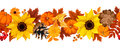 Horizontal seamless background with pumpkins, sunflowers and autumn leaves. Vector illustration.