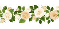 Horizontal seamless background with white roses rose buds and leaves on Royalty Free Stock Photography