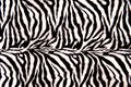 Zebra Pattern Royalty Free Stock Photo