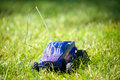 Horizontal of toy rc truck in grass the sun Royalty Free Stock Image