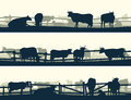Horizontal vector banner farm fields with fence and farm animals