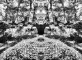 Horizontal vibrant vivid black and white stones spiritual balance Royalty Free Stock Photo