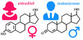 Hormones chemical formula of female and male hormone Stock Image