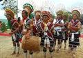 Hornbill festival of Nagaland-India Royalty Free Stock Photo