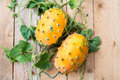 Horned melon, vine with two fresh ripe kiwano, Cucumis metuliferus, on wooden background Royalty Free Stock Photo