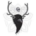 Horned Raven Head
