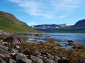 Hornstrandir nature reserve, Iceland Royalty Free Stock Photography