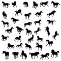 Horse big set of black silhouette Royalty Free Stock Photo