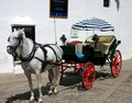 Horse and Buggy in Spain Royalty Free Stock Image