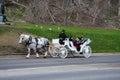 Horse car Royalty Free Stock Photo