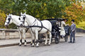 Horse carriage with old fashioned dressed couple in love Stock Images