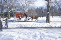 Horse carriage ride in Central Park, Manhattan, New York City, NY after winter snowstorm Royalty Free Stock Photo