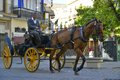 Horse carriage traditional riding in the streets of seville spain Royalty Free Stock Photography