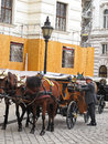 Horse carriage in Vienna - Austria Stock Image