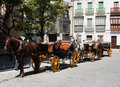 Horse carriages 3 Stock Photos
