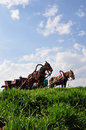 Horse carriages Royalty Free Stock Photo