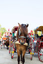 Horse carriages for tourist services in thailand lampang Stock Image